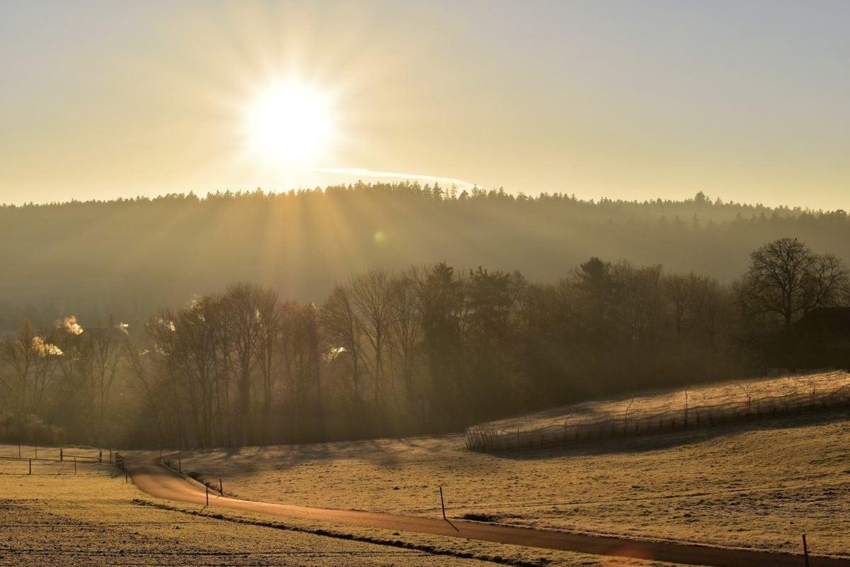 sunshine, tree, landscape, sun, fog, nature, dawn, sky, outdoor