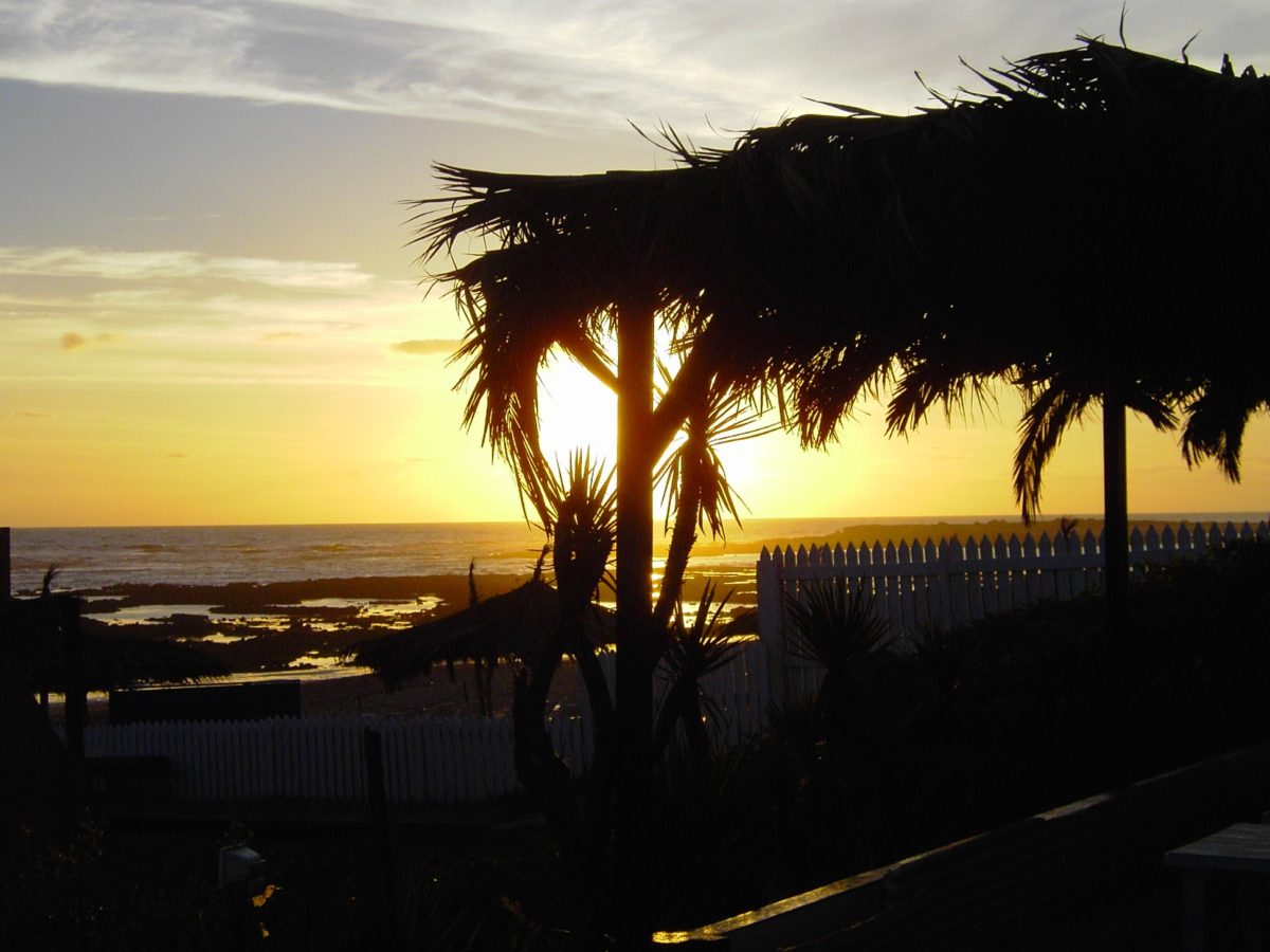 water, seashore, sunset, sea, ocean, beach, dawn, backlit