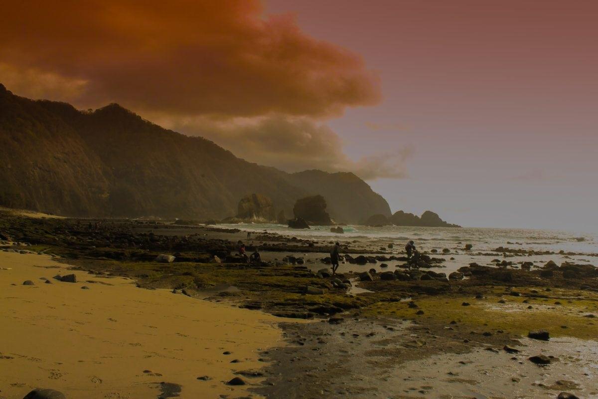 разсъмване, плаж, залез, вода, море, океан, хора,, крайбрежие, пейзаж