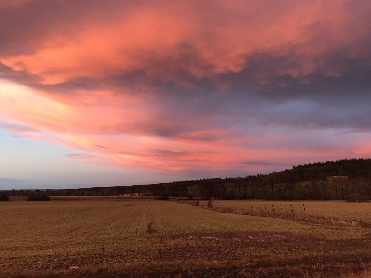 coucher de soleil, aube, Nuage, atmosphère, paysage, crépuscule, Soleil, arbre