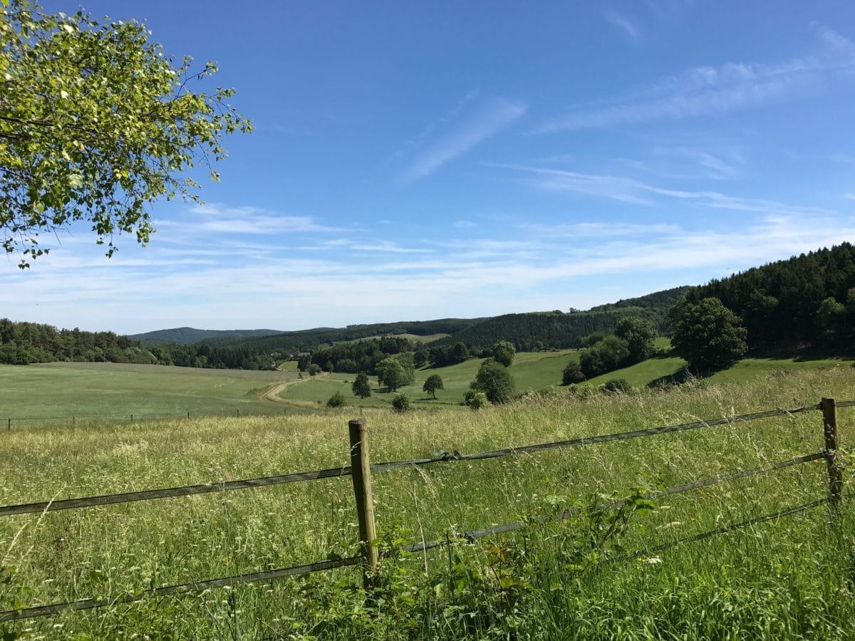 облак, селско стопанство, синьо небе, крайградски, дневна светлина, ферма, ограда, поле