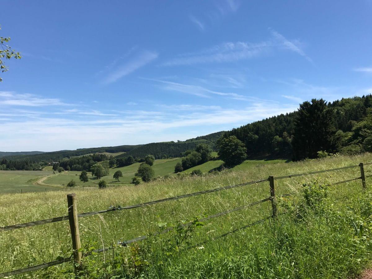 pertanian, bidang, rumput, pemandangan, pohon, alam, awan, pagar