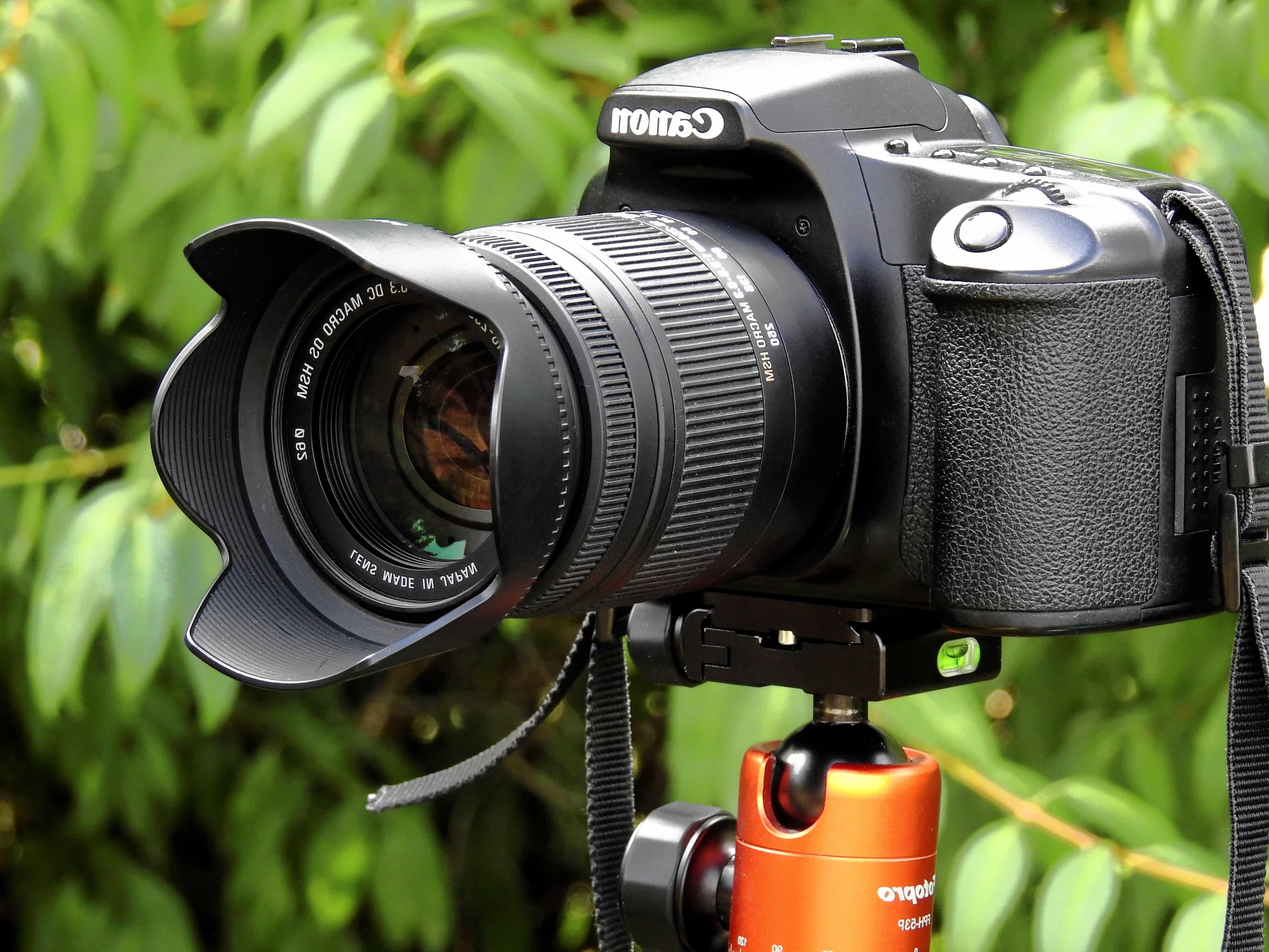 профессиональный фотоаппарат для портрета сегодняшний