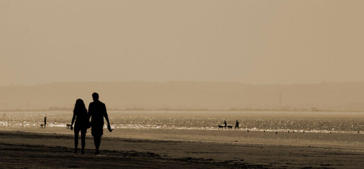 слънце, зората, океан, залез, море, плаж, мъгла, подсветка