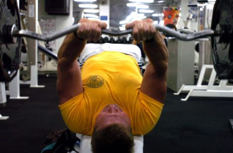 bench, bench press, gym, handsome, sport, training program, weight, dumbbell