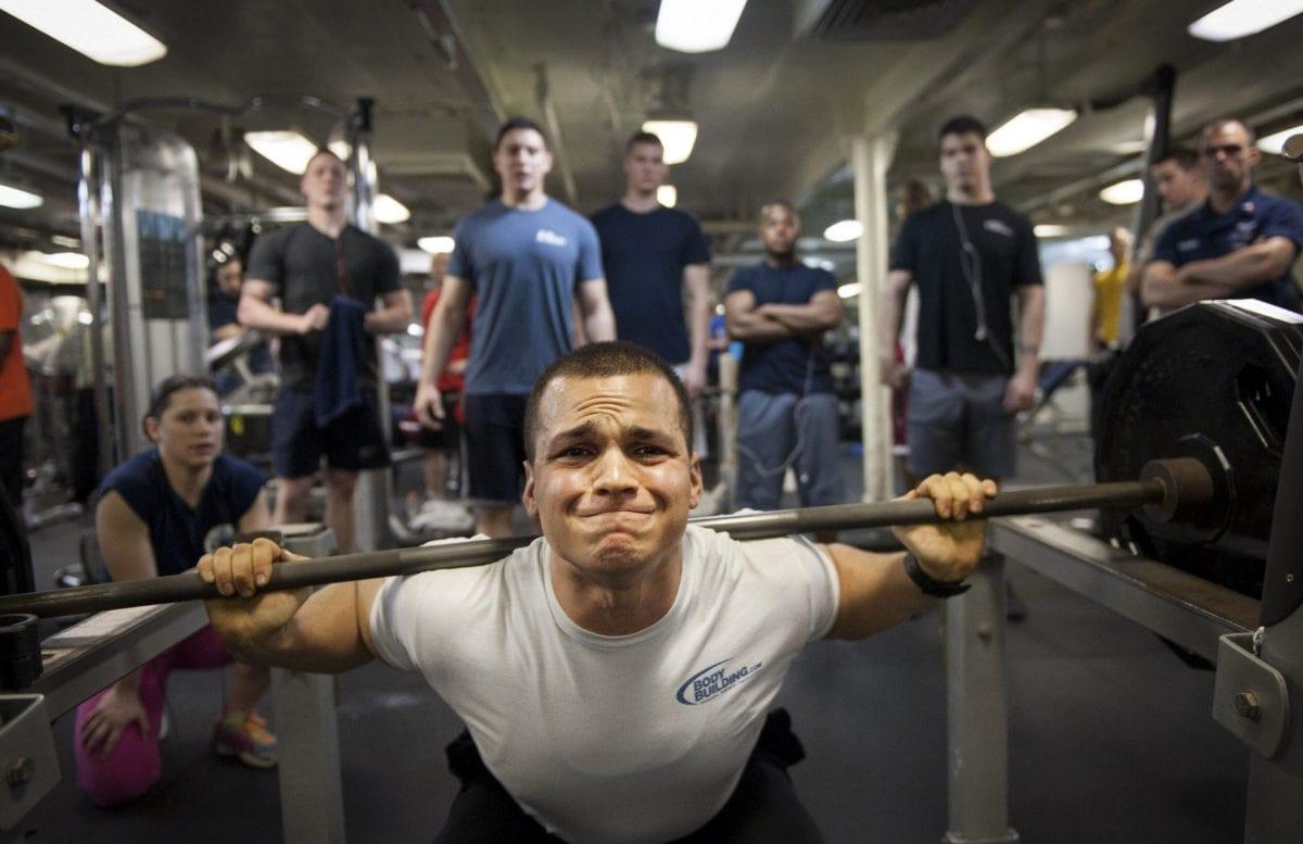 muskel, skulder, styrke, Fitness, treningsstudio, idrettsutøver, utstyr, konkurranse
