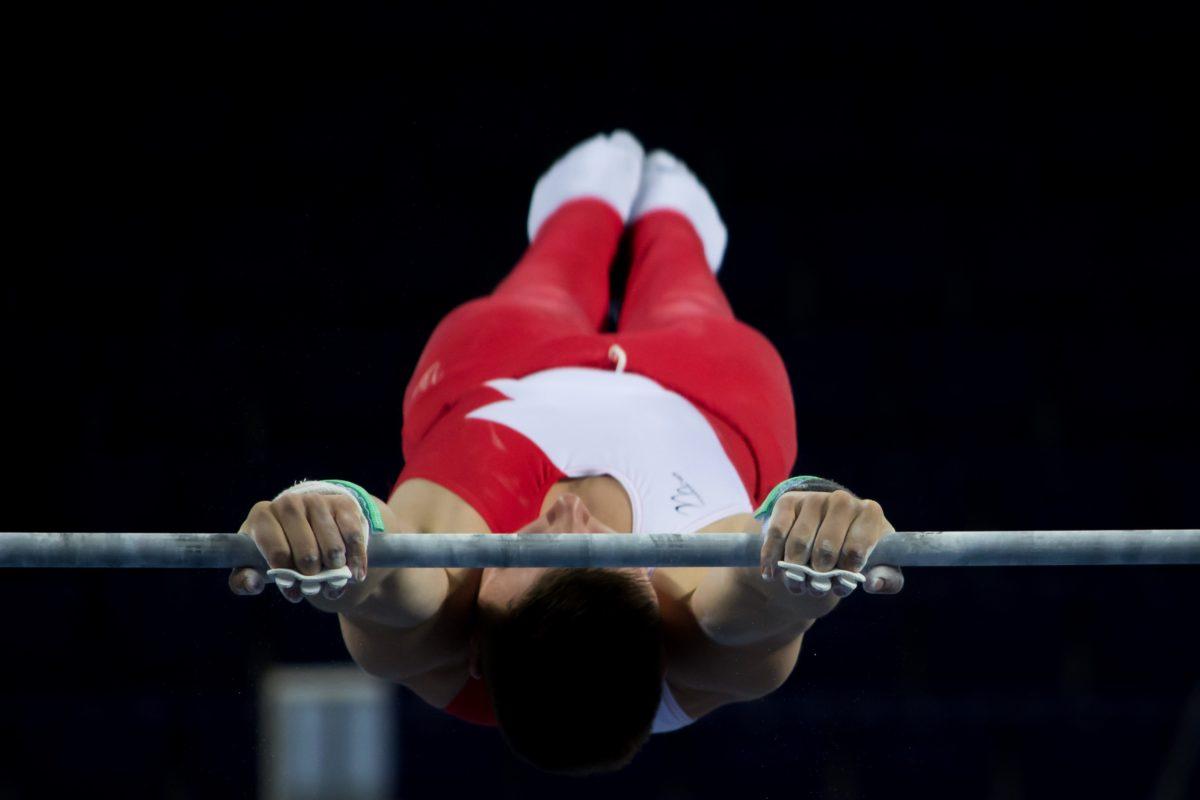 idrettsutøver, atletisk, muskel, muskel, olympiske, Øvelse, utstyr, Fitness