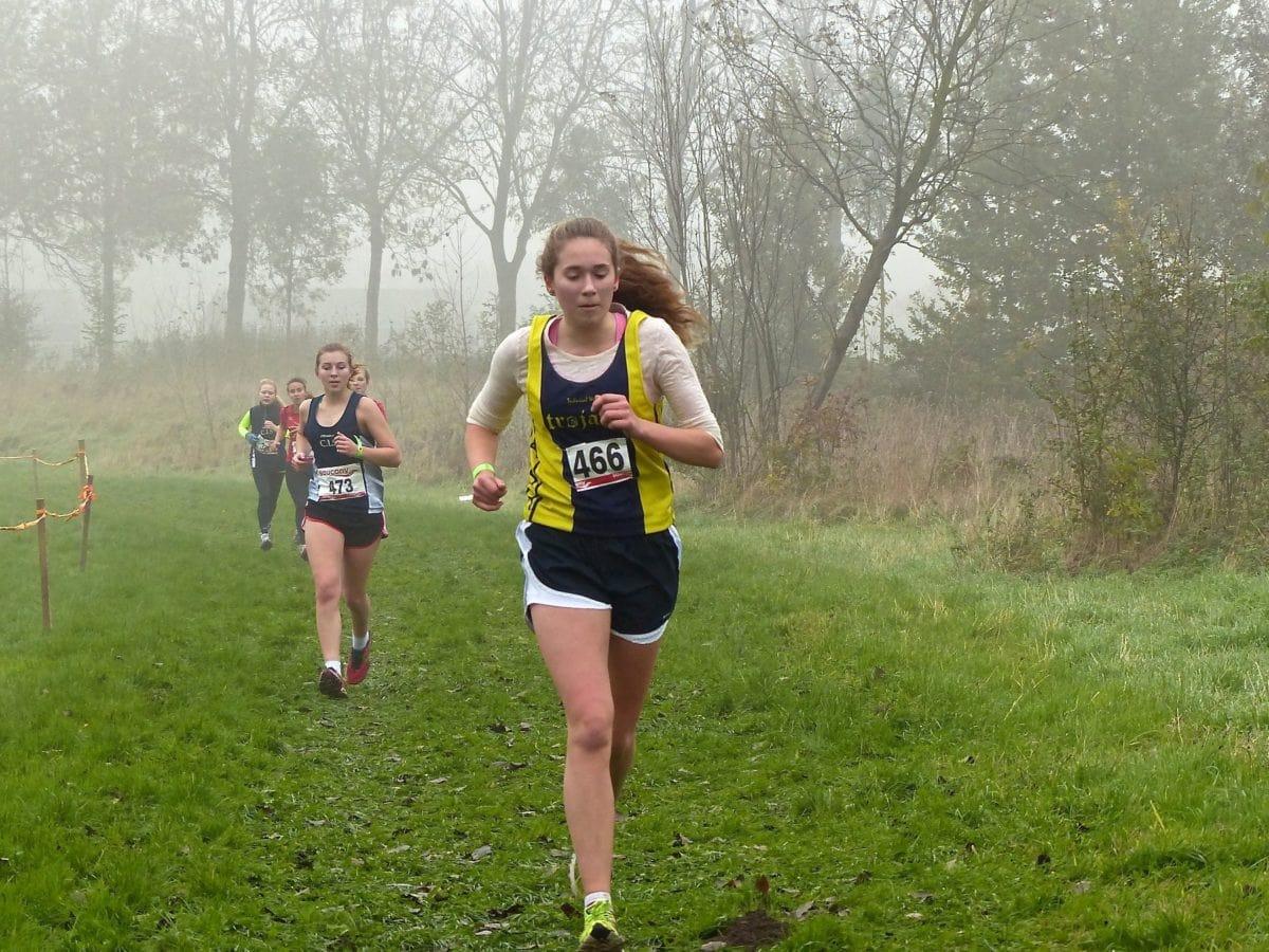 személy, futó, Maraton, sportoló, verseny, gyakorlat, fitness, állóképesség