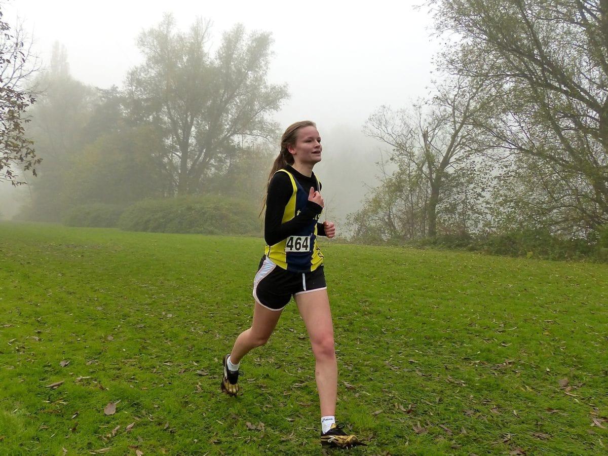 Spor, atlet, çimen, koşucu, kişi, rekabet, manzara, insanlar
