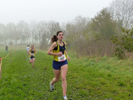athlete, runner, exercise, person, marathon, fitness, competition, race