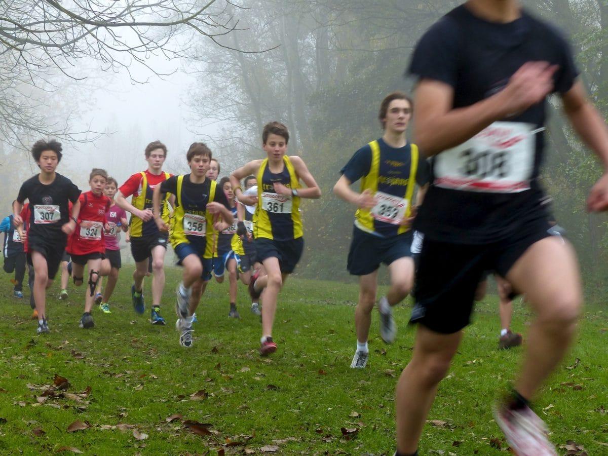 sumu, sumuinen, nurmikolla, Marathon, rugby, kilpailu, urheilija, pallo