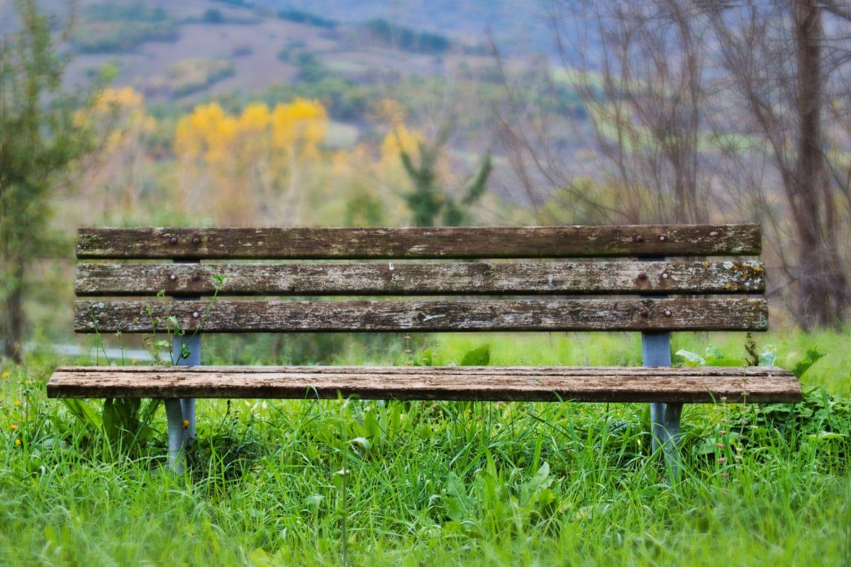 lavica, denné svetlo, životné prostredie, nábytok, jarný čas, sedadlo, horizontálne, tráva