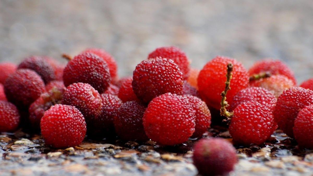 dessert, delicious, berry, strawberry, fruit, raspberry, food, sweet
