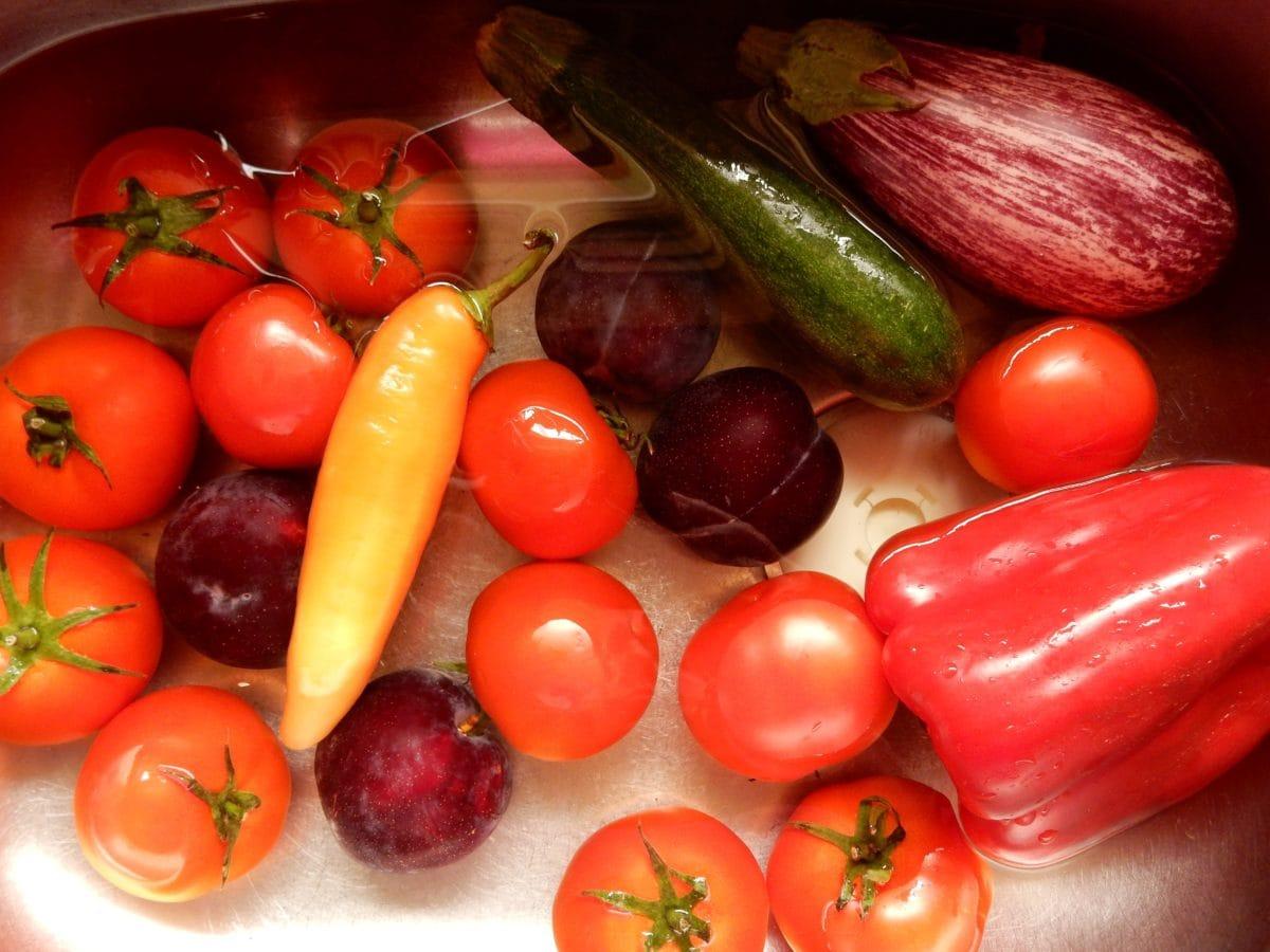 bell pepper, tomato, eggplant, cucumber, food, pepper, vegetarian, vegetable