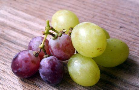 vinstok, frugt, druer, mad, druemost, ernæring, lækker, blad