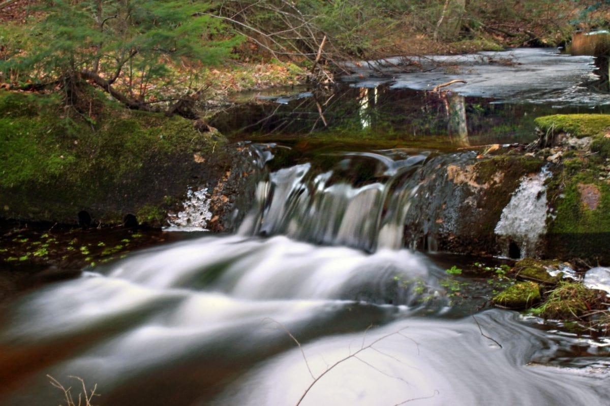 流, 景观, 森林, 瀑布, 水, 河, 石头, 溪
