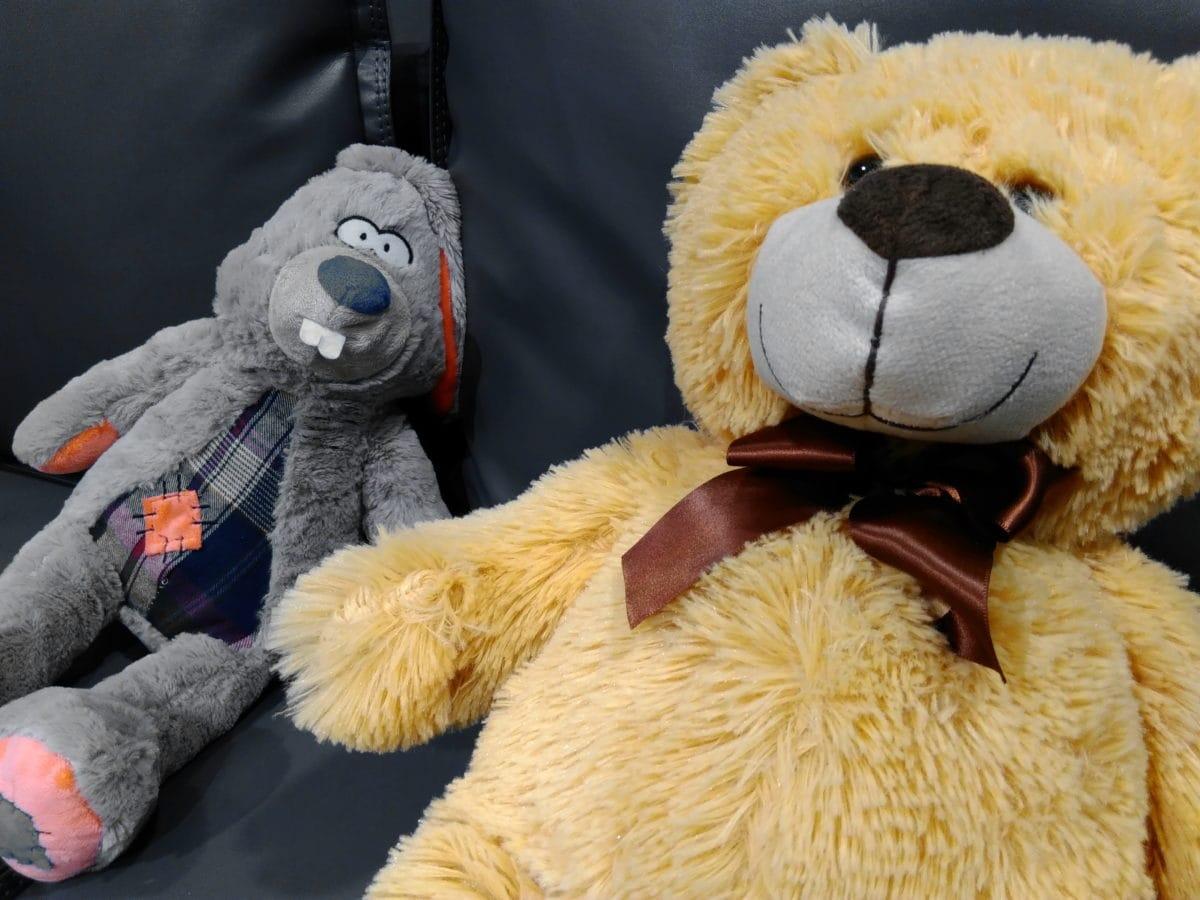 oso de, osito de peluche, juguete, lana, desgaste, hecho a mano, Grupo, Color