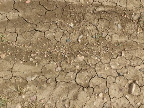 stone, soil, mud, drought, dirty, texture, dry, rough