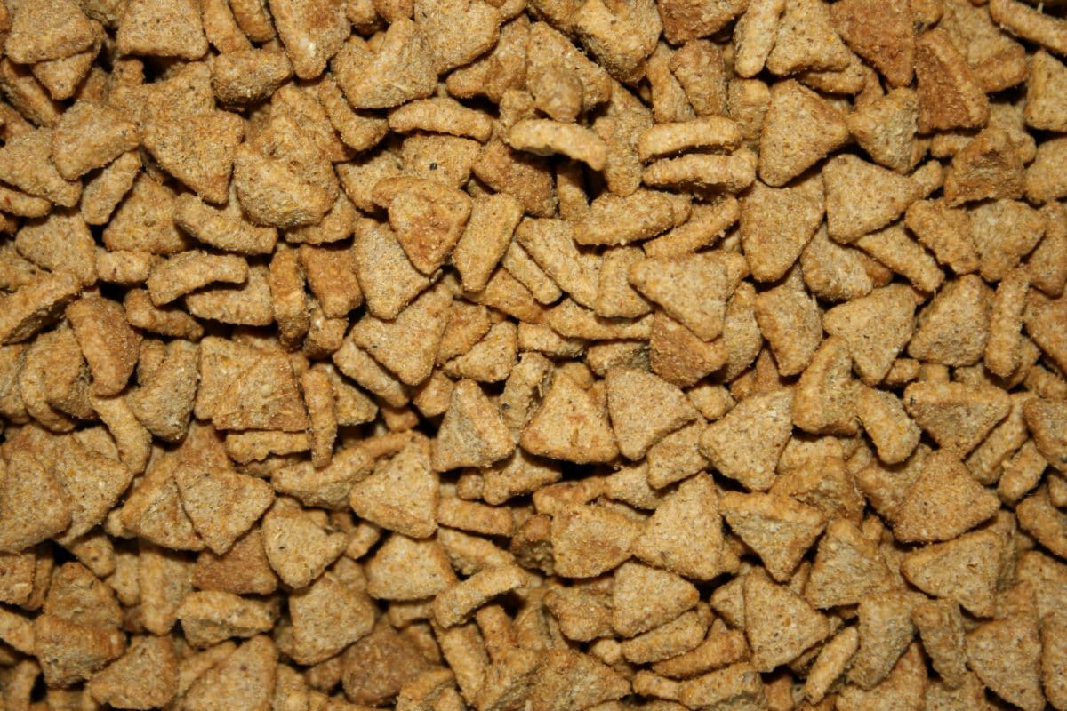 snack, dry, pattern, texture, upclose, food, batch, pile