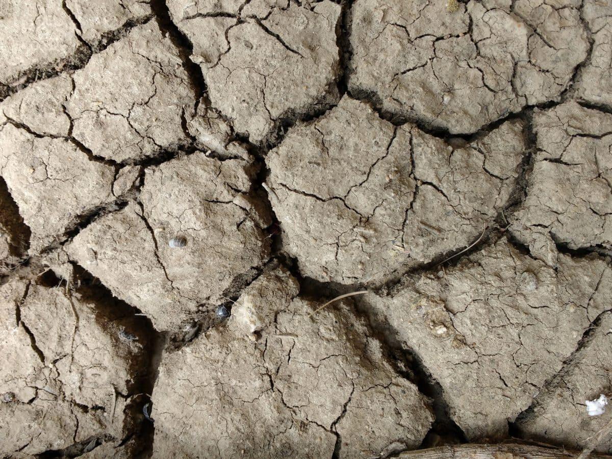 rakenne, pinta, kuiva, kuivuus, joutomaa, pöly, muta, likainen