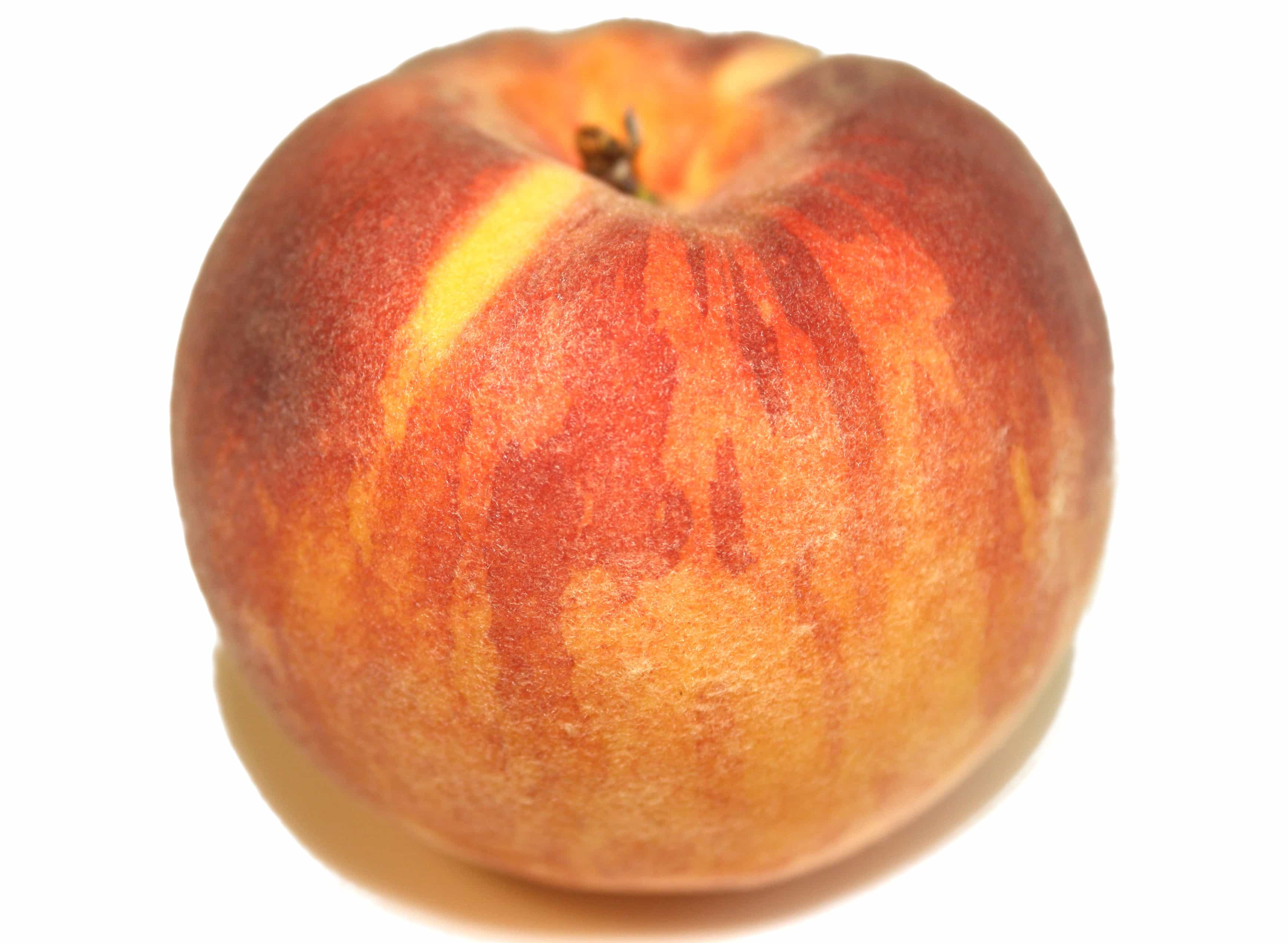 Glohaven Peach Trees For Sale Online | The Tree Center™