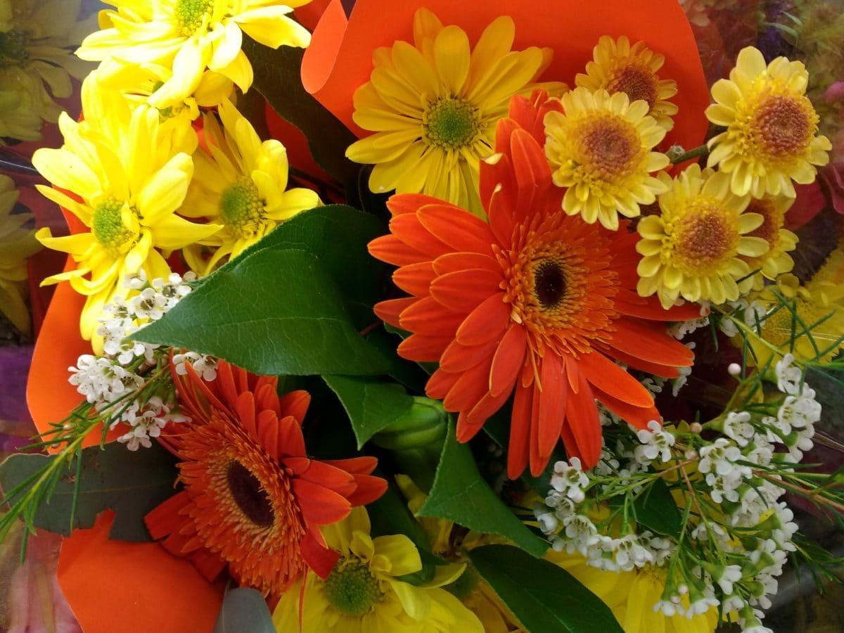 bunga, karangan bunga, bunga matahari, flora, pengaturan, dekorasi, alam, daun
