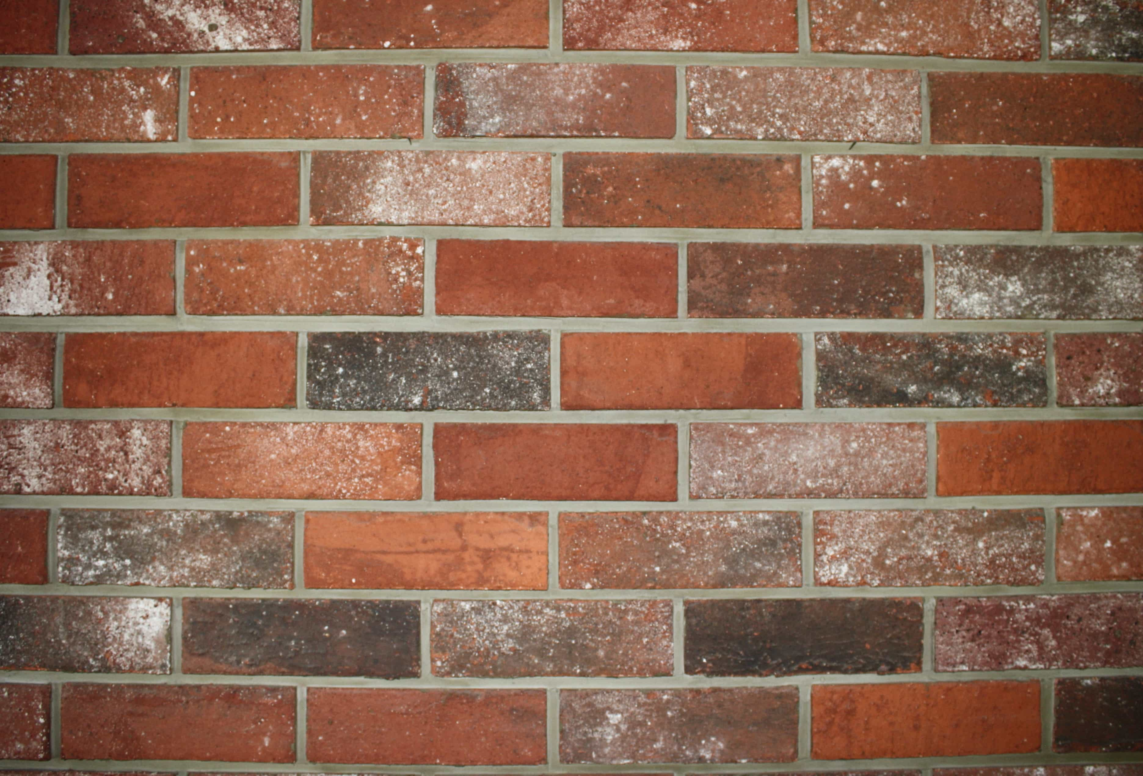 Free Picture Wall Cement Texture Brick Surface Old