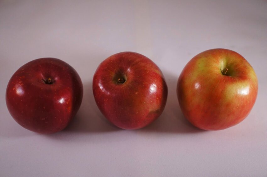 Antioxidant Tuesdays-Red Delicious Apples