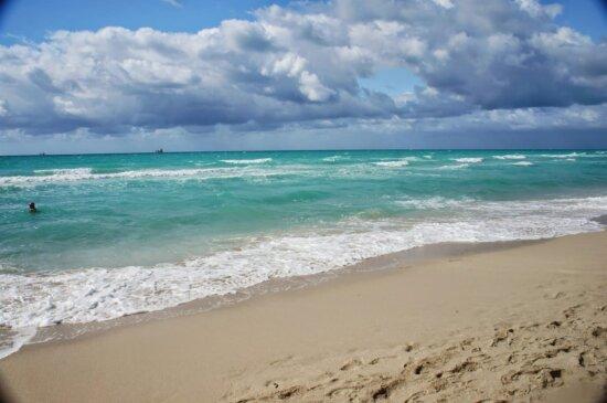 Schönwetter, Schwimmer, Strand, Surfen, Barriere, Wasser, Meer, Ozean