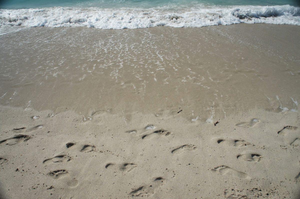 ชายหาด, ทะเล, น้ำ, โอเชี่ยน, ชายฝั่งทะเล, ทราย, ชายฝั่ง, เล่นกระดานโต้คลื่น