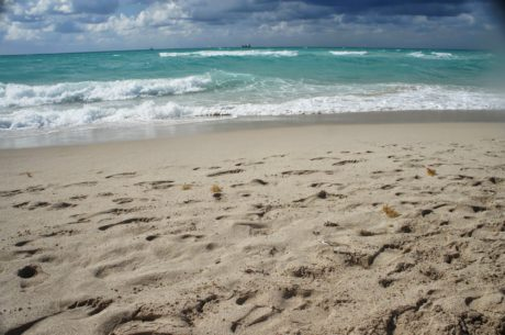 luontomatkailua, hyvällä säällä, horisontti, Island, ranta, harjanne, hiekkasärkkä, meri