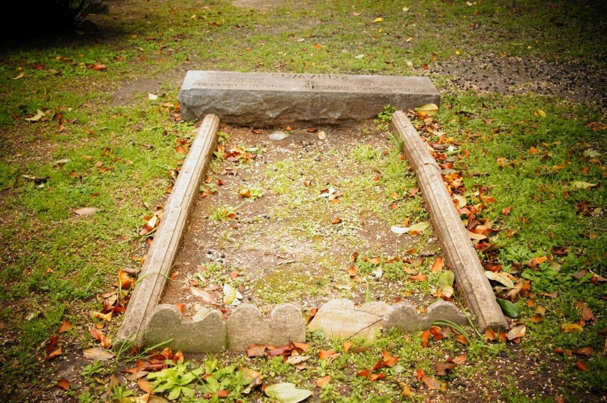 begraafplaats, grafsteen, steen, gedenkteken, blad, park, boom, natuur