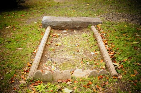 cemetery, gravestone, stone, memorial, leaf, park, tree, nature
