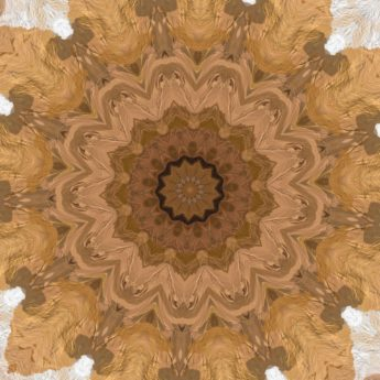 arabesque, light brown, photomontage, surreal, symmetry, decoration, abstract, damask