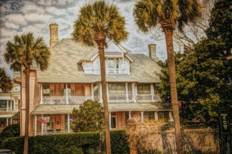 house, illustration, palm, photomontage, tree, architecture, home, building