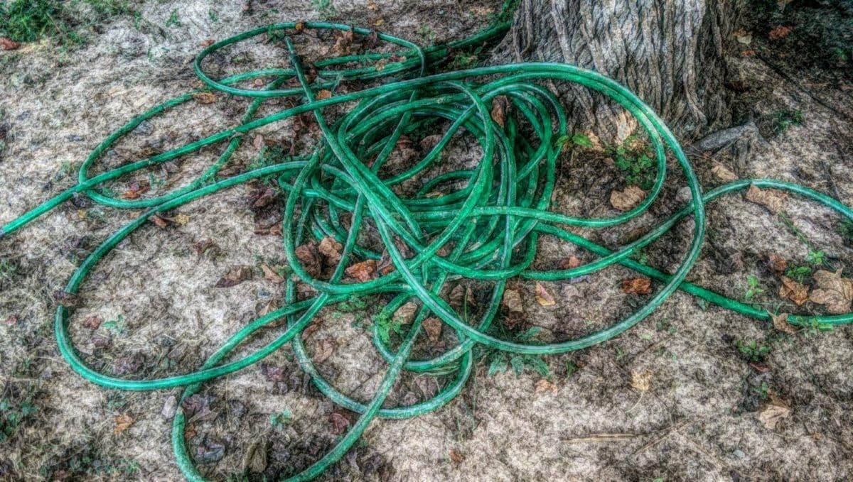 обект, пластмаса, корен, природата, лято, флора, на открито, градина
