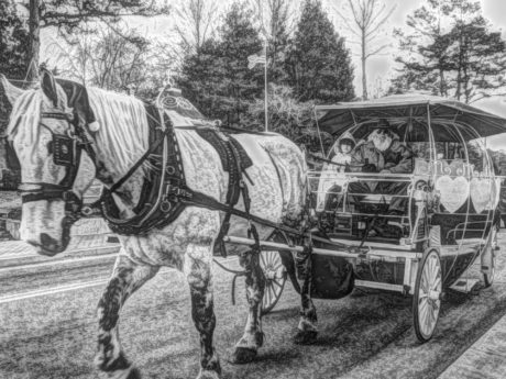 black and white, horse, monochrome, people, wagon, carriage, cart, vehicle