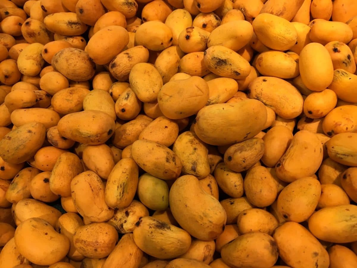 grow, fruit, food, mango, produce, nutrition, group, health