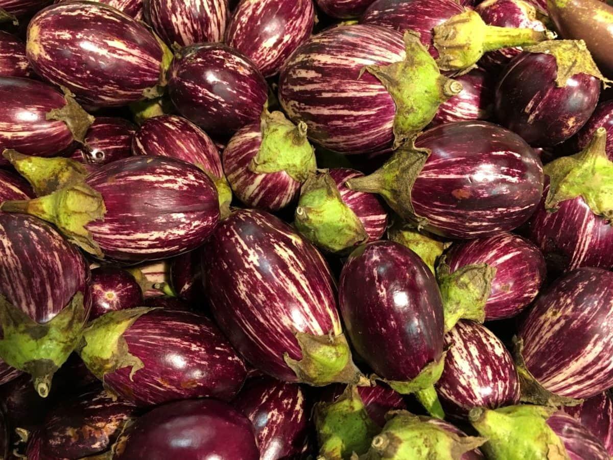 munakoiso, violetti, Ruoka, ravitsemus, terve, Kasvis, ruokavalio, kasvaa