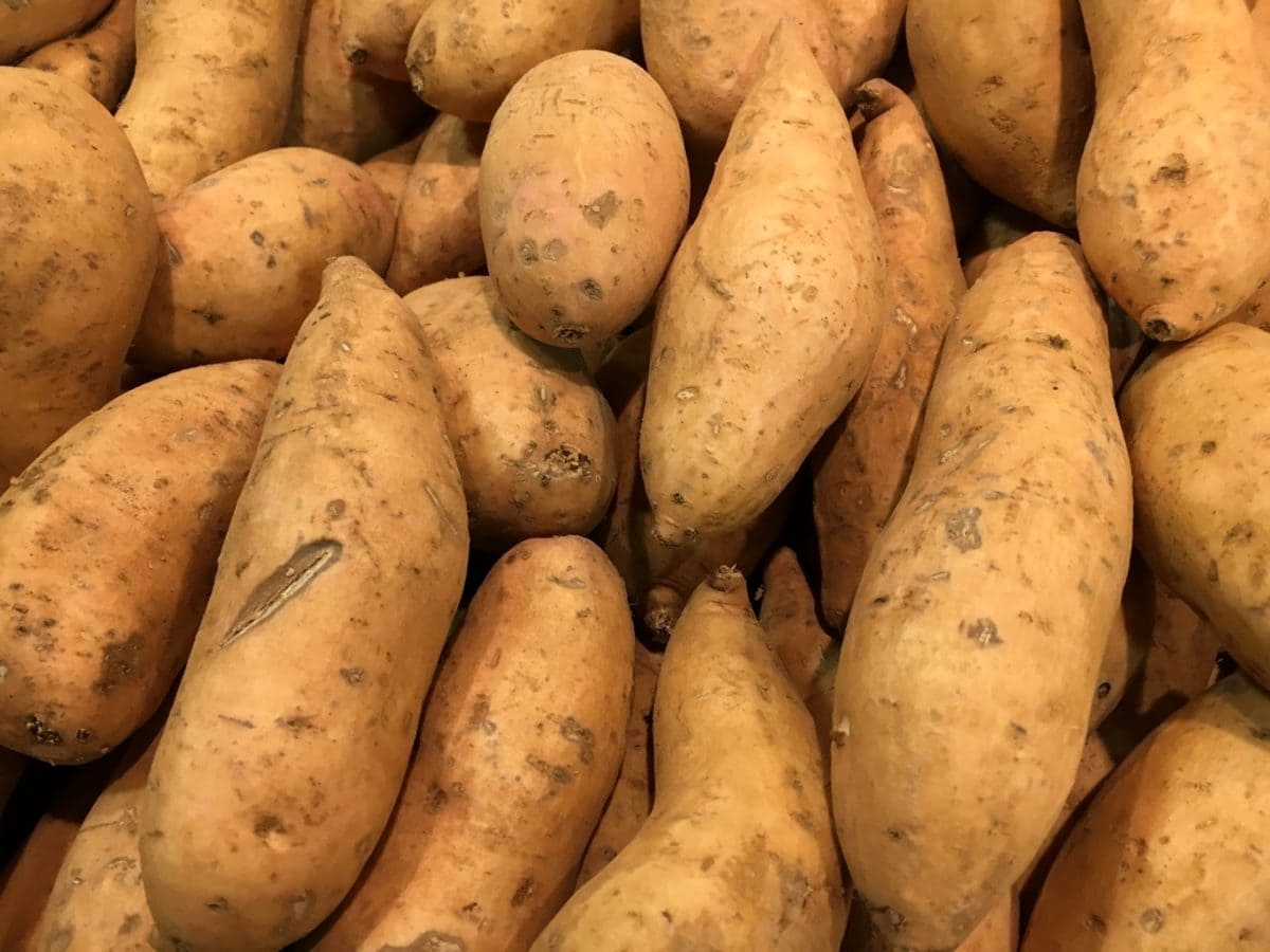hidrato de carbono, comida, mercado, raiz, vegetal, crescer, batata-doce, batata