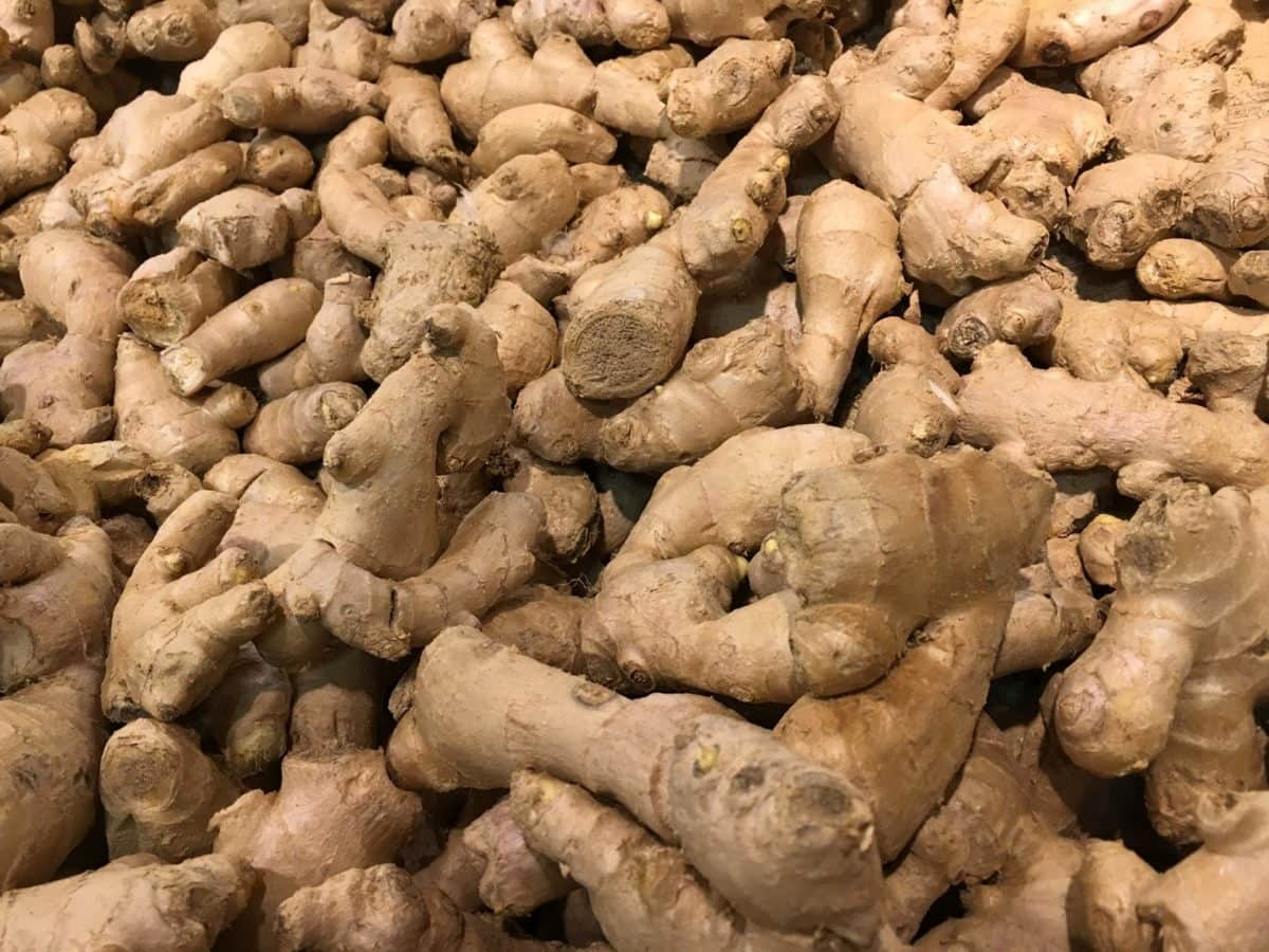 antioxidant, ginger, vegetable, food, produce, root, pile, farming