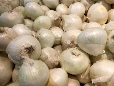 garlic, spice, food, health, onion, vegetable, cooking, pasture