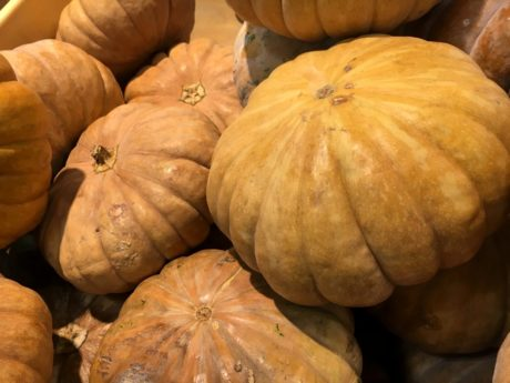 pumpkin, harvest, pasture, thanksgiving, autumn, squash, food, market
