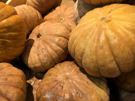 Squash, Harvest, Kürbis, Thanksgiving, Herbst, Halloween, Essen, Markt