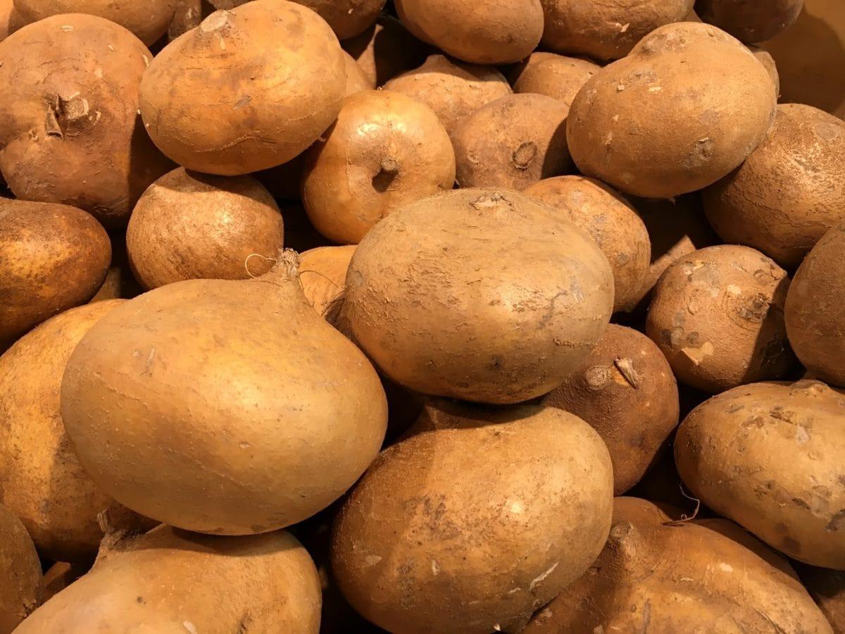 kentang, kentang, ubi jalar, menghasilkan, buah, Makanan, Kesehatan, tumbuh
