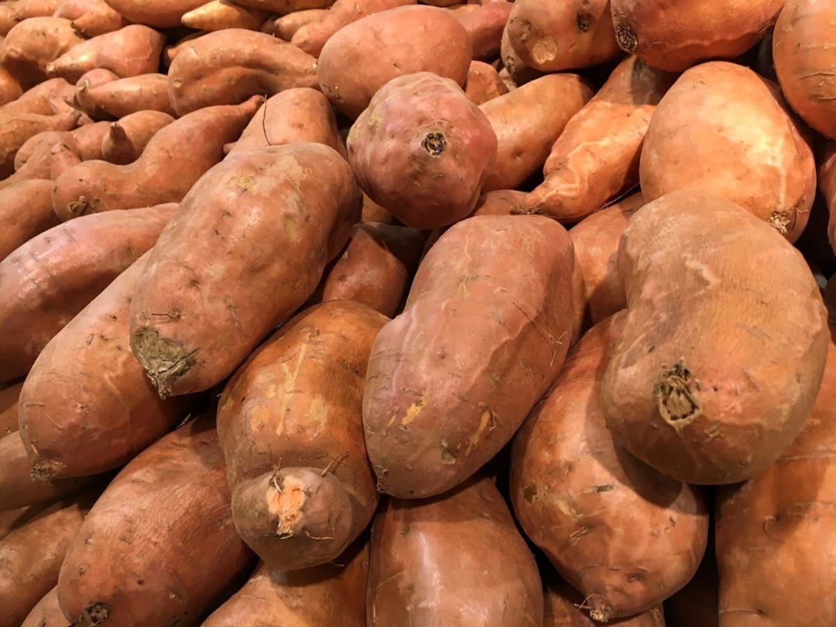 корінь, рослинні, солодкий картопля, виробляють, їжа, ринок, рости, Сільське господарство