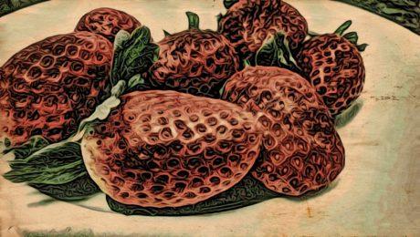 bildkonst, jordgubbar, mat, dekoration, mönster, konsistens, design, blomma