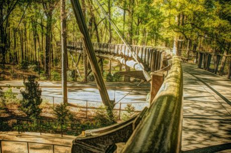 oil painting, bridge, suspension bridge, wood, tree, step, structure, nature