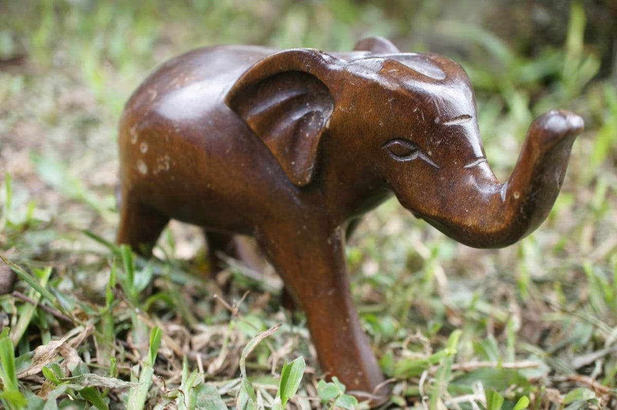 Művészet, elefánt, kézzel készített, szobrászat, fa, természet, élelmiszer, állat