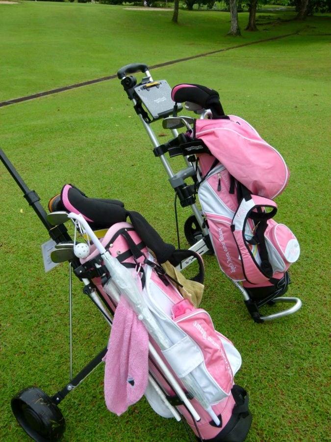poggyász, Golf, Sport, vas, fű, szabadidő, szabadidő